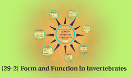 29-2} Form and Function in Invertebrates by Bryana Perreaux on Prezi