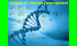 Chapter 3 : Human Development