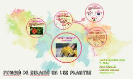 FUNCIÓ DE RELACIÓ EN LES PLANTES