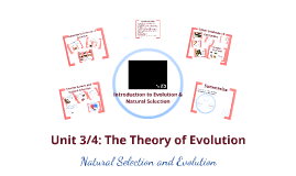 Unit 3: Evolution and Natural Selection