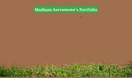 mAdison sacramone's Portfolio