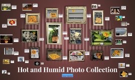 Hot and Humid Photo Collection