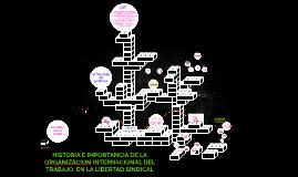 HISTORIA E IMPORTANCIA DE LA ORGANIZACION INTERNACIONAL DEL