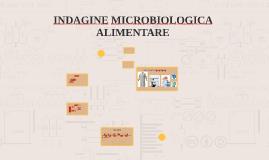 INDAGINE MICROBIOLOGICA ALIMENTARE