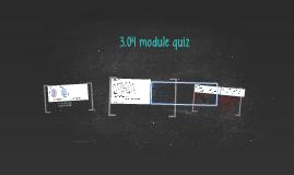 3.04 module quiz