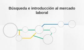 Búsqueda e introducción al mercado laboral