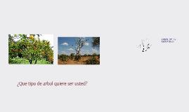 Copy of La Semilla y la Identidad