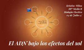 El ADN bajo los efectos del sol