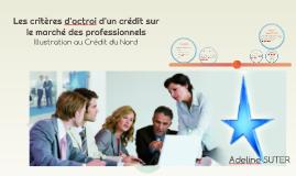 Les critères d'octroi d'un crédit sur le marché des professi
