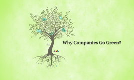 Sustainability & Corporations