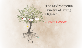 The Environmental Benefits to Eating Organic