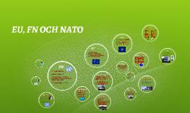 Copy of FN