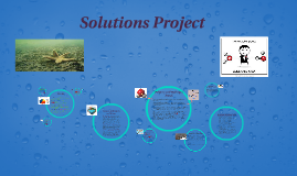 Solutions Project