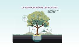 LA REPRODUCCIÓ DE LES PLANTES