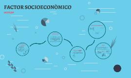 FACTOR SOCIOECONÒMICO