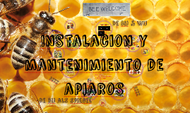 Copy of Bee Aware