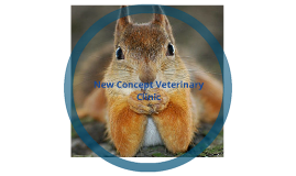New Concept Animal Clinic