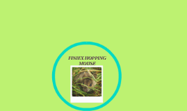 FINIEX HOPPING MOUSE