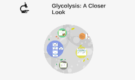 Glycolysis: A Closer Look