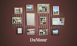 DaMour intro Q2 2014