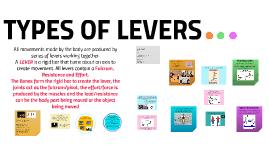 LEVERS A level PE
