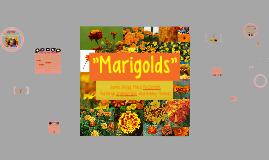 Plot diagram for the interlopers by luke wagoner on prezi copy of marigolds ccuart Gallery