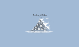 Cattle and Cotton