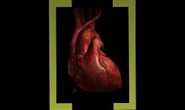 Copy of Valvular Heart Disease