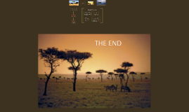Copy of THE African Savanna Ecosystem