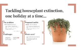 Tackling houseplant extinction, one holiday at a time...