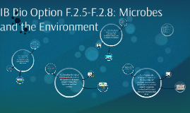IB Bio Option F2: Microbes and the Environment