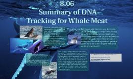 8.06 Summary of DNA