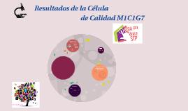 Nuestra célula de Calidad M1C1G7