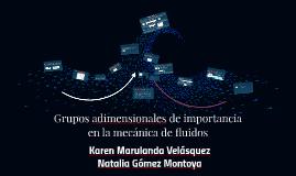 Copy of Grupos adimensionales de importacia