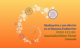 Copy of Meditación y sus efectos en el Sistema Endocrino