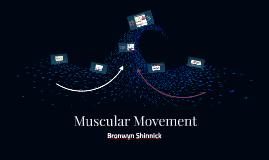 Muscular Movement