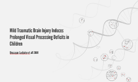 Mild Traumatic Brain Injury Induces Prolonged Visual Process