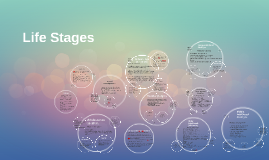 Copy of Life Stages
