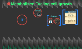 Chapter 6 Metabolism: Fueling cell growth