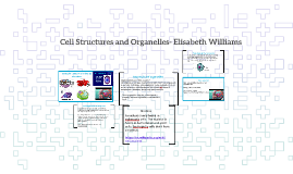 Cell Structures and Organelles- Elisabeth Williams