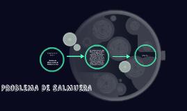 PROBLEMA DE SALMUERA