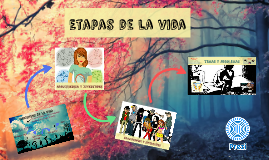 Copy of Copy of Etapas de la vida