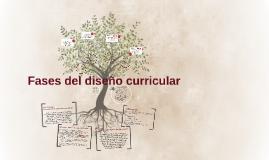 Fases del diseño curricular