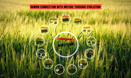 Human connection with nature