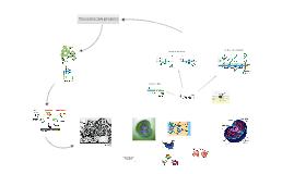 Síntesis de proteïnes