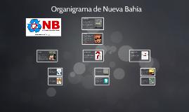 Organigrama de Nueva Bahía