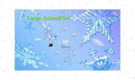 Large Animal Vet