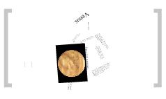 Venus-Levi