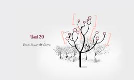 Usul 20