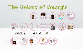 Your Colony and Georgia